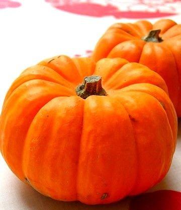 かぼちゃ(パンプキン)