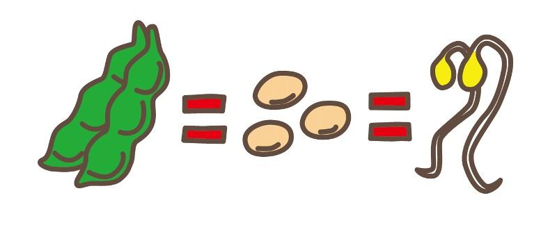 枝豆と大豆ともやし