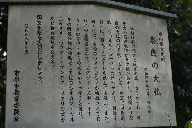奈良の大仏(千葉県)