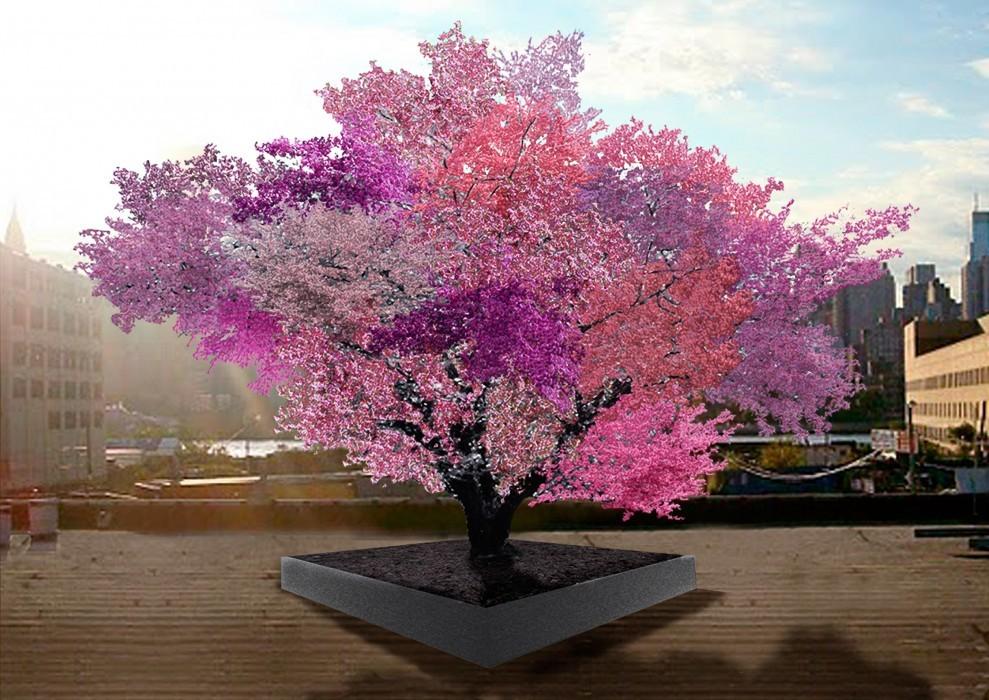 40種類の花が咲く木