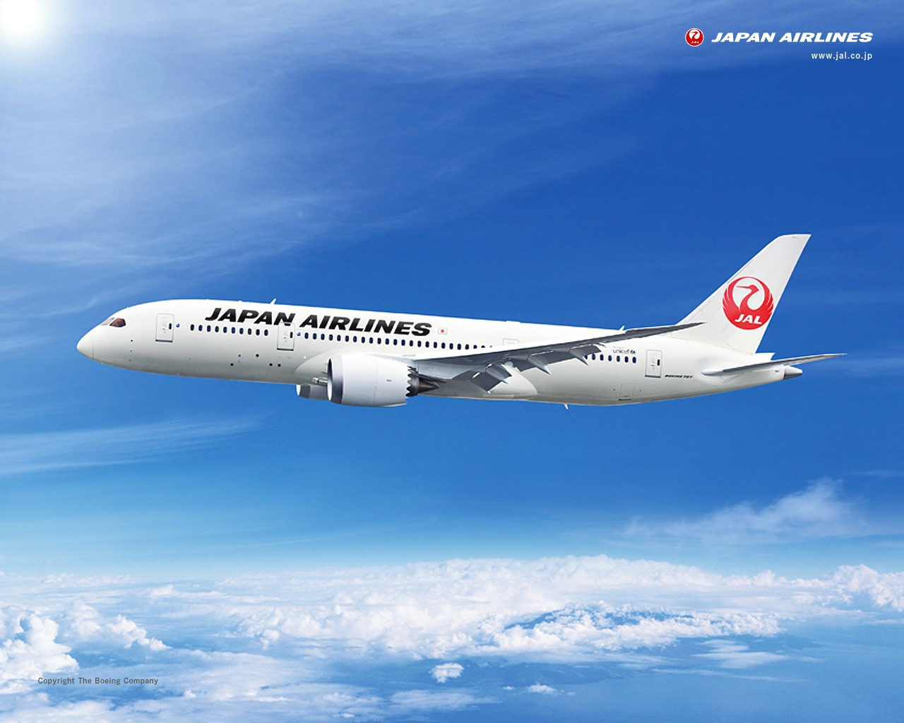 JAL ボーイング787-8