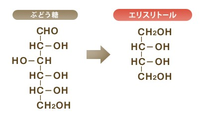 酵母による発酵