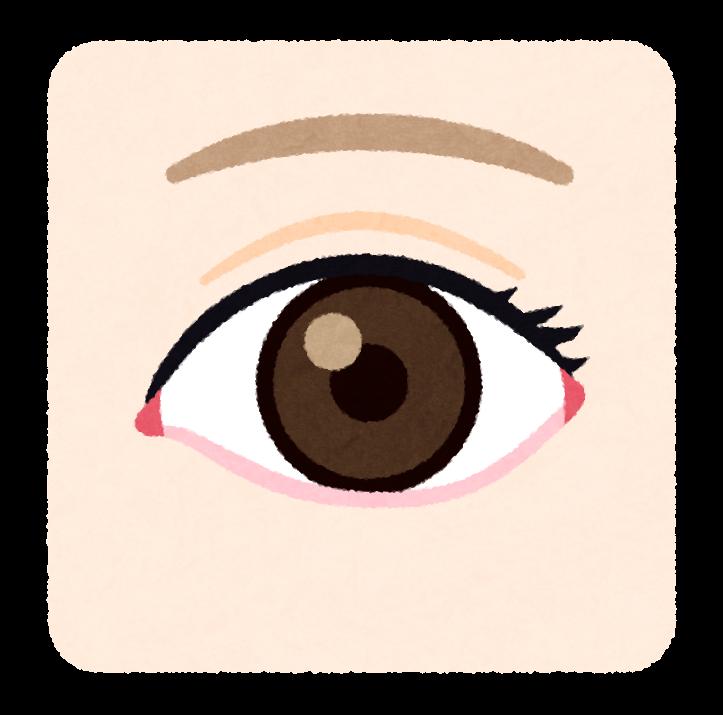 カラコンをつけた人の目