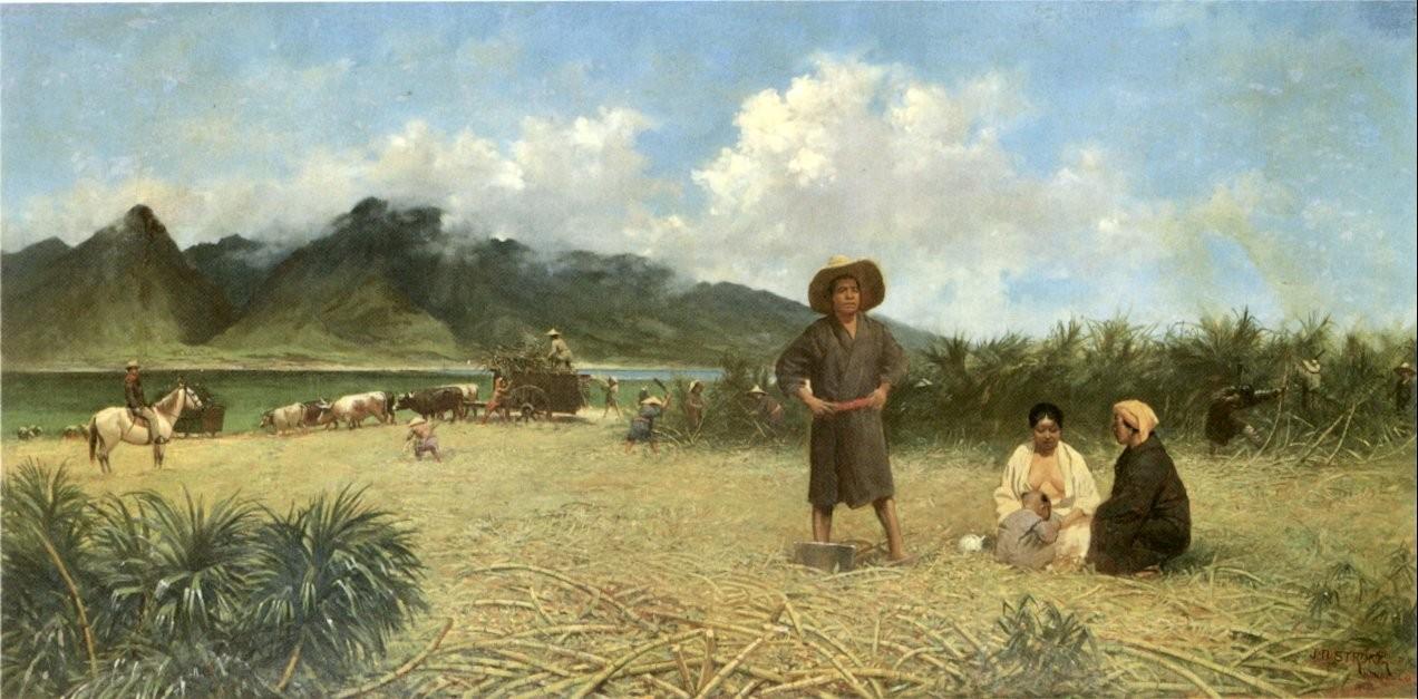 『明治拾八年に於ける布哇砂糖耕地の情景』