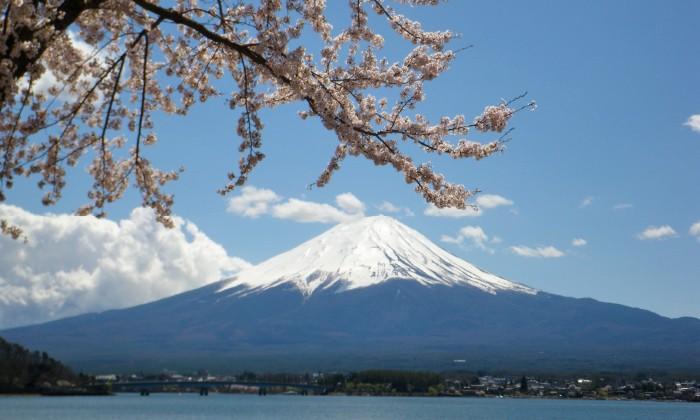 富士箱根伊豆国立公園