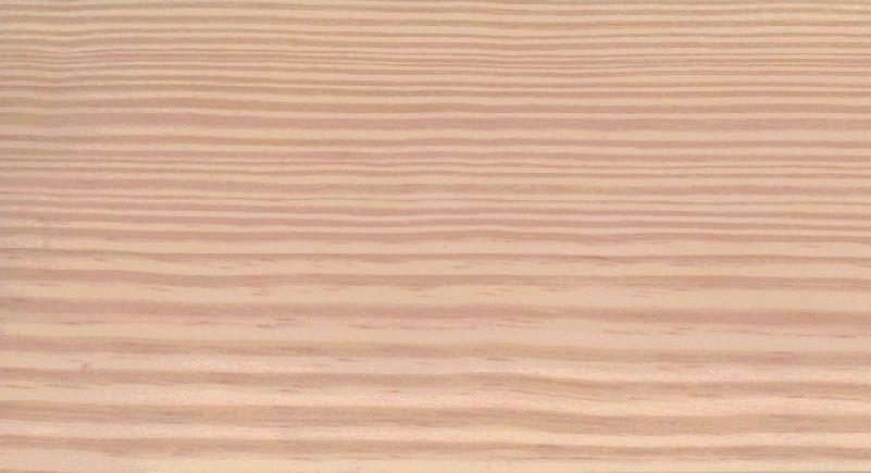 サザンイエローパインの柾目