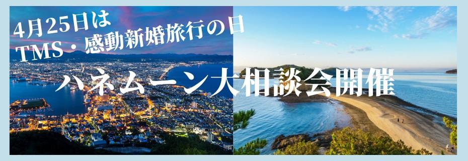 TMS・感動新婚旅行の日