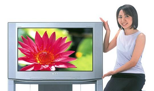 デジタルハイビジョンテレビ(2002年)