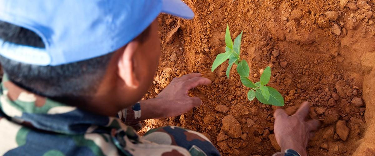 戦争と武力紛争による環境搾取防止のための国際デー